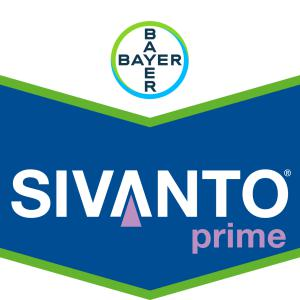 Bayer Sivanto